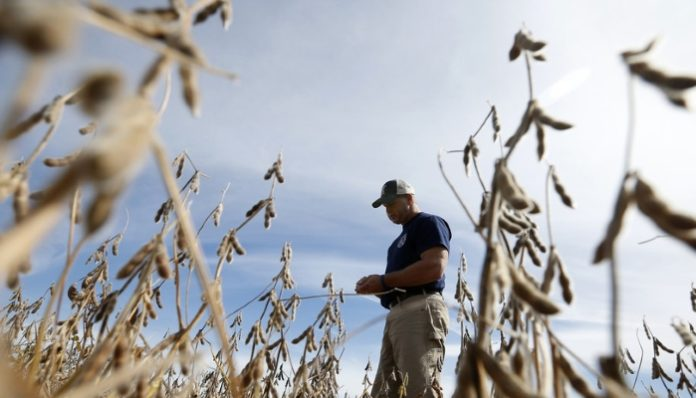 Сельское хозяйство и автопром США могут столкнуться с кризисом из-за торговых пошлин Трампа