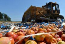Штрафы за ввоз в Россию санкционных продуктов могут вырасти в 10 раз