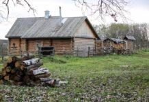 На север за свежениной. Уроженка Украины стала фермером в удаленном поселке