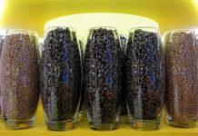 В Минсельхозе обсудили обеспечение аграриев качественным семенным материалом