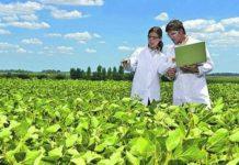 В России начнет работу первый Центр технологического трансфера (ЦТТ) в области сельского хозяйства