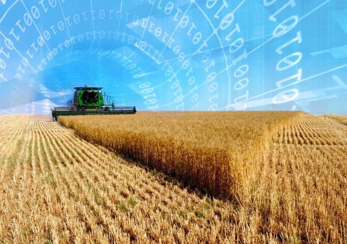 ВБ рекомендует выработать механизмы финансирования цифровизации малых фермерств в России
