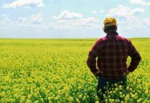 Владимир Путин предложил ввести новые меры поддержки фермеров