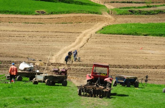 Глава Минсельхоза Молдавии предложил пересмотреть запрет на продажу земель иностранцам