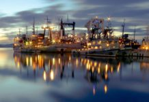 Компании «Валка» и «Мурман СиФуд» построят в России завод по переработке донной рыбы