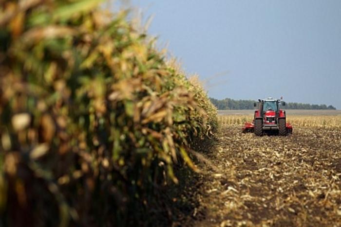 Кредитование сезонных полевых работ выросло на 33,92%