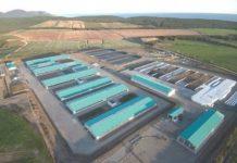 Молочно-товарная ферма построена с нуля в Сахалинской области