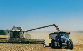 На 12 ноября в России намолочено 115,1 млн тонн зерна