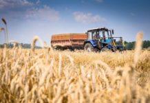 Правительство выделит на развитие агропромышленного комплекса 294 млрд рублей