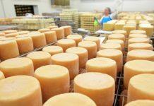«Русагро» планирует стать одним из крупнейших производителей сыра