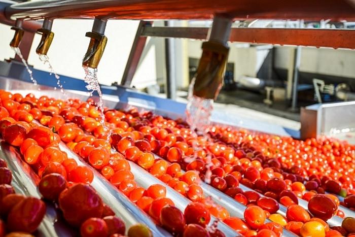 В Астраханской области построят за 6 млрд рублей второй завод по переработке томатов