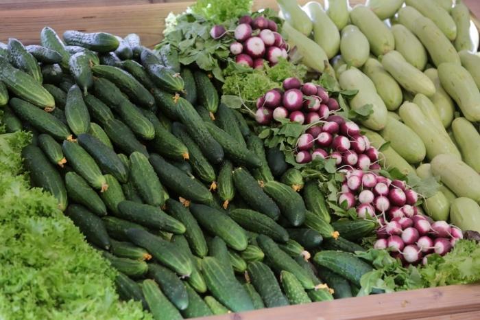 В Липецкой области закупки сельхозпродукции у личных подсобных хозяйств выросли вдвое