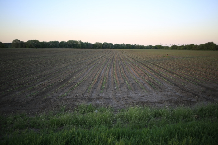 В Тульской области обсудили применение органических удобрений в сельском хозяйстве