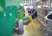 Израильская компания предложила организовать в Башкортостане сборочное производство техники для кормления скота