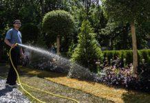 Кабардино-Балкария лидирует по темпам закладки многолетних садов