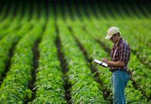 НСА намерен внести в стандарты агрострахования положения против страхового мошенничества