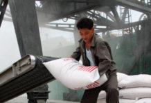 ООН оценила потребности КНДР в зерне