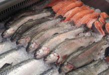 Сколько люди готовы заплатить за рыбу