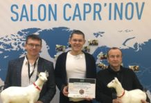 Сыр из Марий Эл получил международное признание