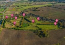Вологодская ГМХА приглашает на виртуальную экскурсию по Дендрологическому саду