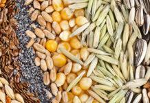 Итоги исследования семян в 2018 году омским референтным центром
