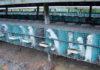 Механизация соболиной фермы