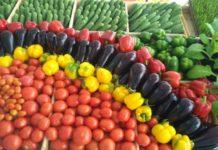 Нижегородская область планирует наращивать производство тепличных овощей