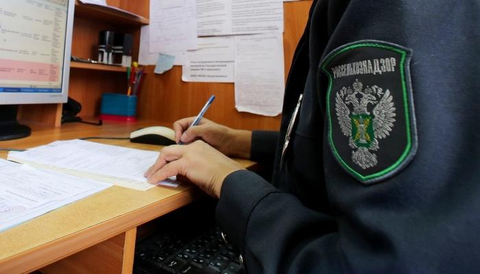 Оренбургский Россельхознадзор предотвратил незаконный ввоз 21 тонны растительной продукции из Казахстана