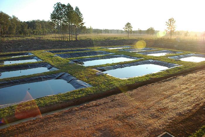Полносистемное прудовое хозяйство
