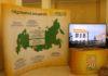 Предприятия холдинга «Солнечные продукты» собираются обратится в арбитражный суд с заявлением о собственном банкротстве