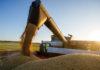 Россельхознадзор предлагает усилить контроль за экспортом зерна