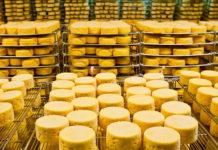 Сыроварни Мордовии произвели более 17 тысяч тонн сыра