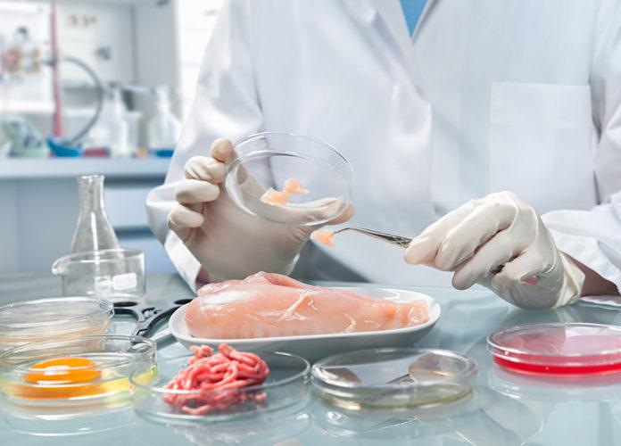 Гордеев выступил за обязательные лабораторные исследования продуктов при госзакупках
