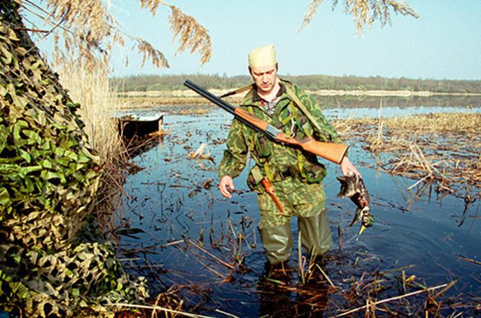 Кабмин предлагает ужесточить наказание за незаконную добычу редких рыб и животных