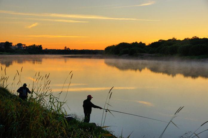 Как выбрать рыбное место