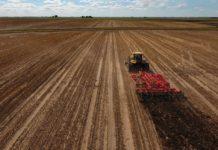 Крым лидирует по темпам ярового сева в России