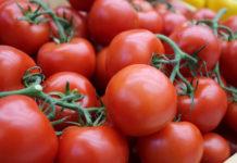 Липецким аграриям помогут выйти на международные рынки