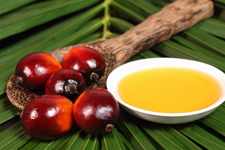 Малайзия увеличила экспорт пальмового масла