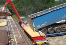 Омская область в январе отгрузила почти 200 тыс. тонн зерна