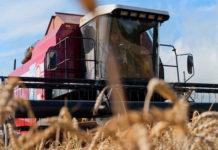 Сельхозпроизводителям Ивановской области направят почти 31 млн рублей