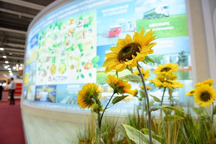 В Крыму готовятся к проведению выставки «АгроЭкспоКрым»