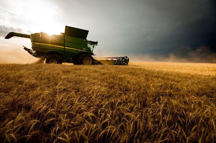 9 статистических показателей в сельском хозяйстве, которые нужно знать в 2019 году