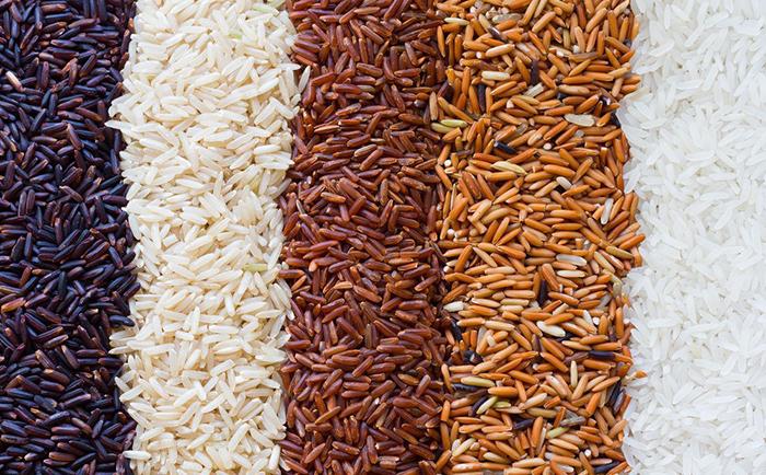 АФГ Националь зарегистрировал три новых сорта риса