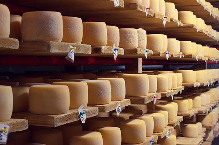 «АгриВолга» вложит 1,8 млрд рублей в сырный завод в Угличе