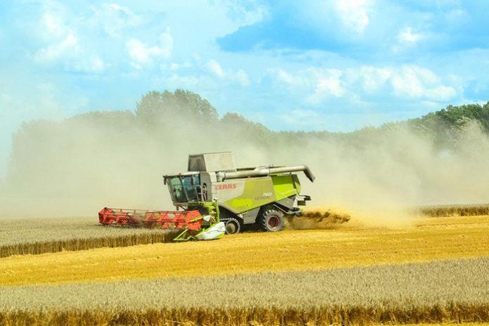 Более 134 миллионов получит Новосибирская область на развитие сельского хозяйства