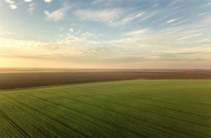 Экономический рост в сельском хозяйстве не привёл к решению социальных проблем села