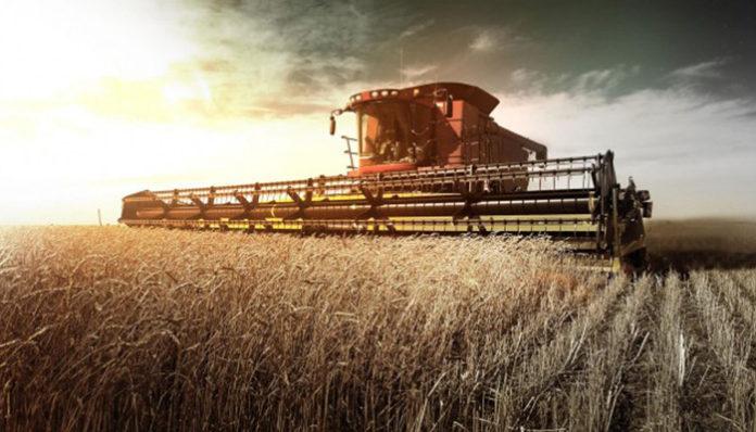 Как ученые оценивают состояние аграрного сектора России