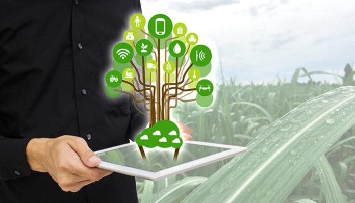 Какие инновационные технологии хотят внедрить в сельское хозяйство?