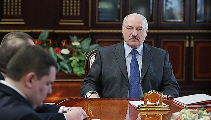 Лукашенко объяснил череду увольнений после посещения коровьего освенцима