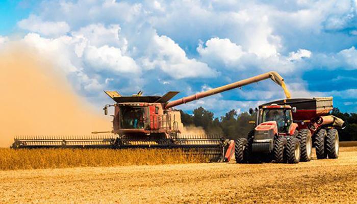 Минсельхоз Казахстана прогнозирует в 2019 году снижение сбора зерна в стране на 14_5%